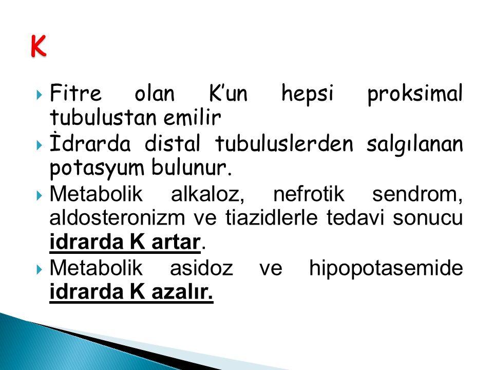 K Fitre olan K'un hepsi proksimal tubulustan emilir
