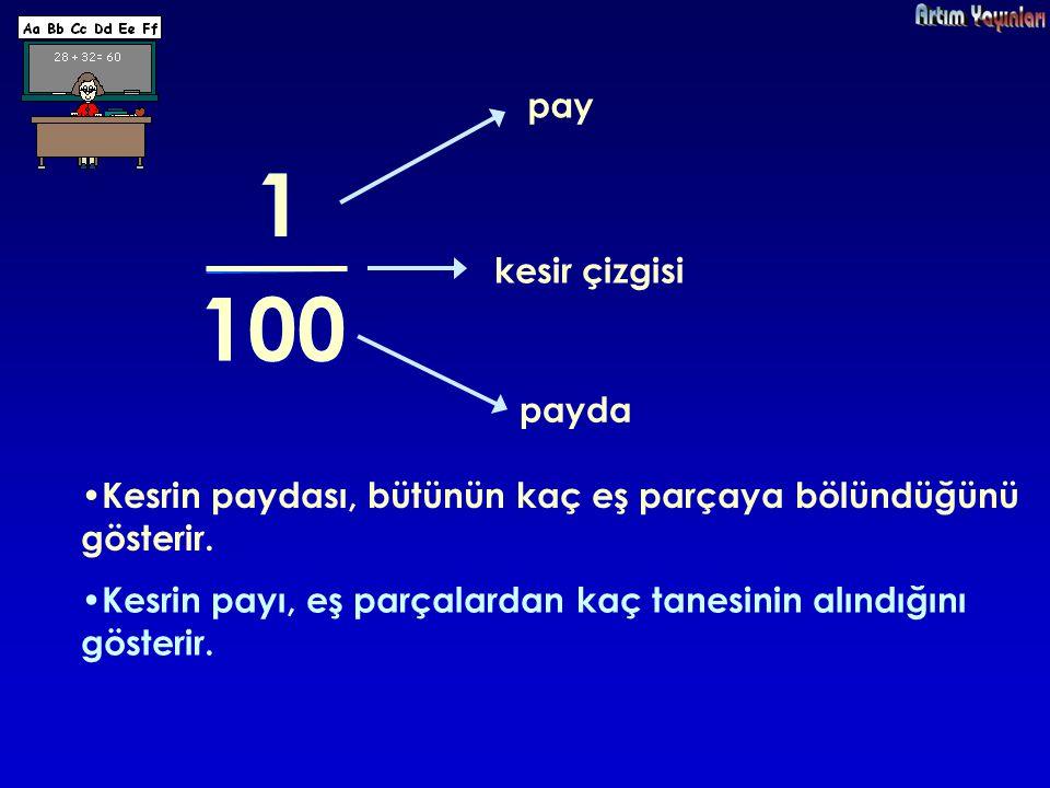 1 1 100 100 pay kesir çizgisi payda
