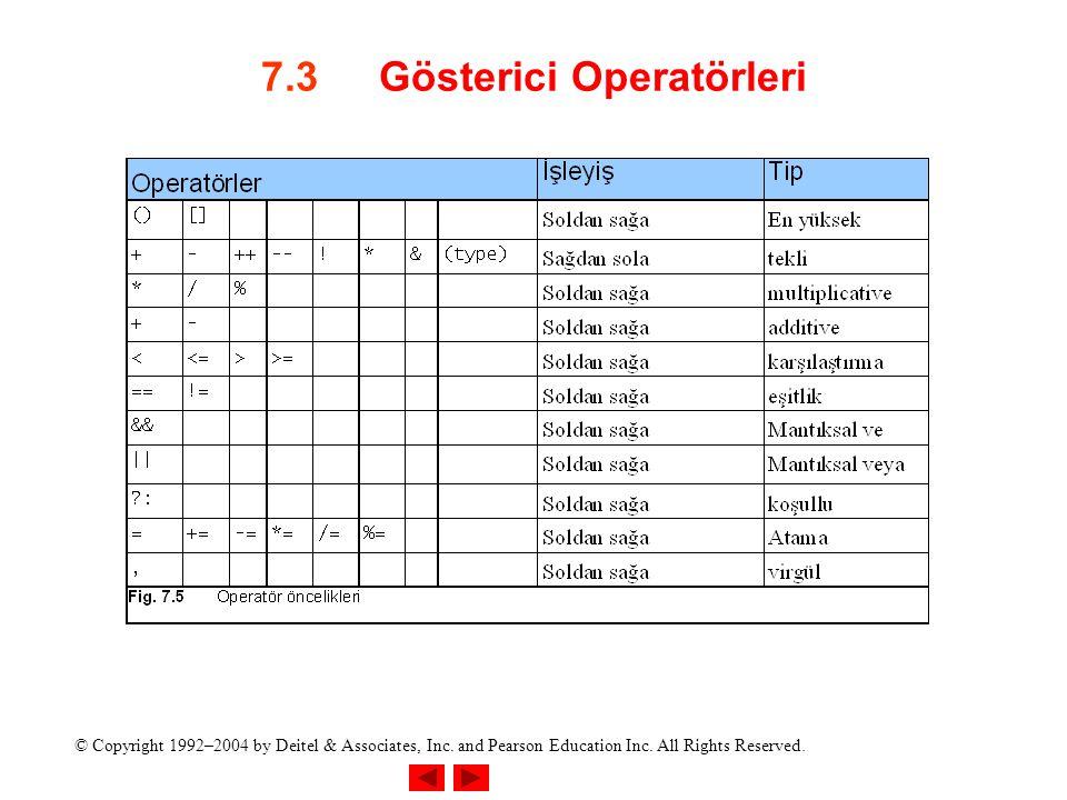 7.3 Gösterici Operatörleri