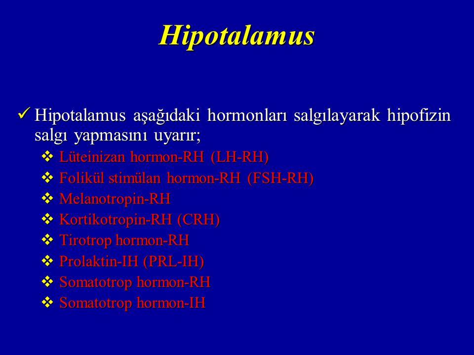 Hipotalamus Hipotalamus aşağıdaki hormonları salgılayarak hipofizin salgı yapmasını uyarır; Lüteinizan hormon-RH (LH-RH)