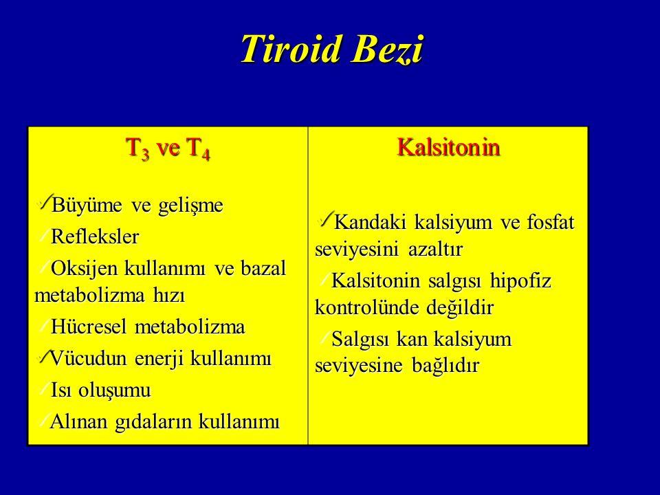 Tiroid Bezi T3 ve T4 Büyüme ve gelişme Kalsitonin