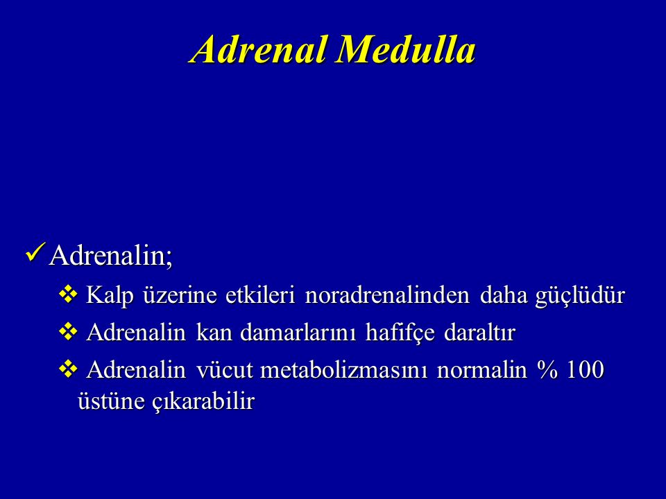 Adrenal Medulla Adrenalin;