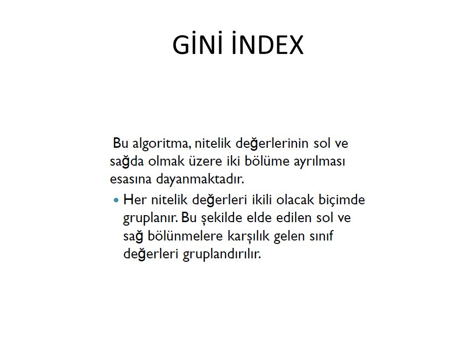 GİNİ İNDEX