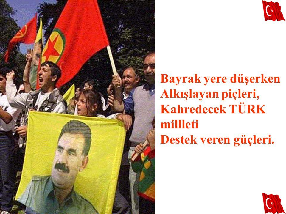 Bayrak yere düşerken Alkışlayan piçleri, Kahredecek TÜRK millleti Destek veren güçleri.