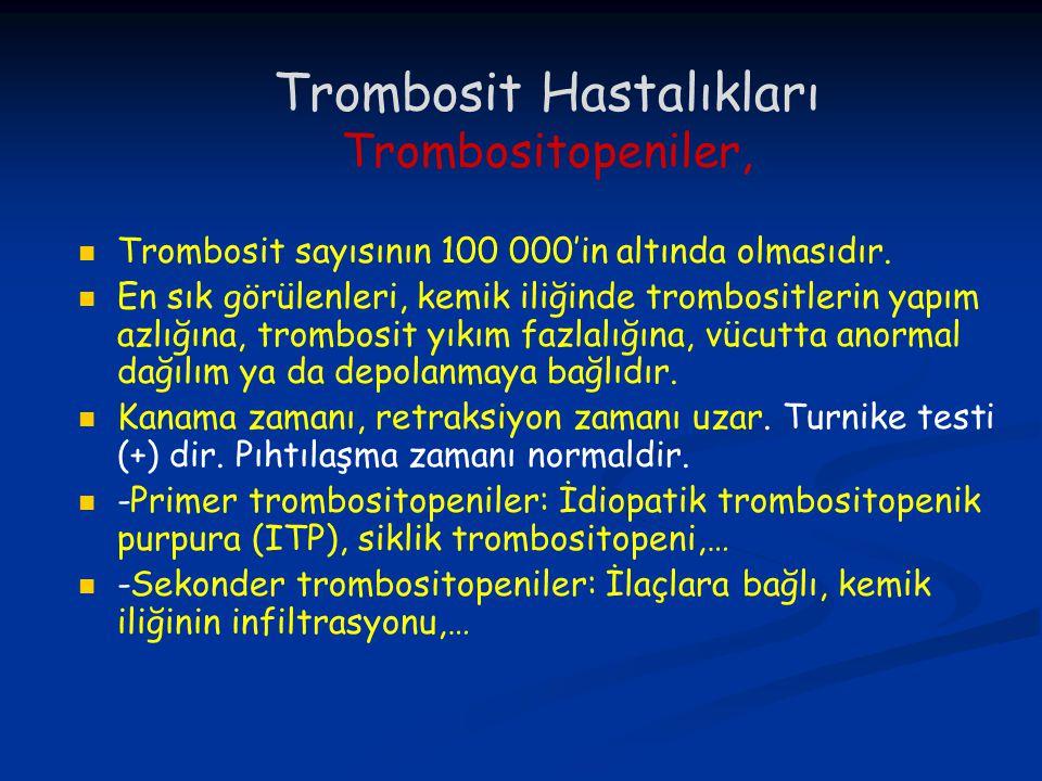 Trombosit Hastalıkları Trombositopeniler,