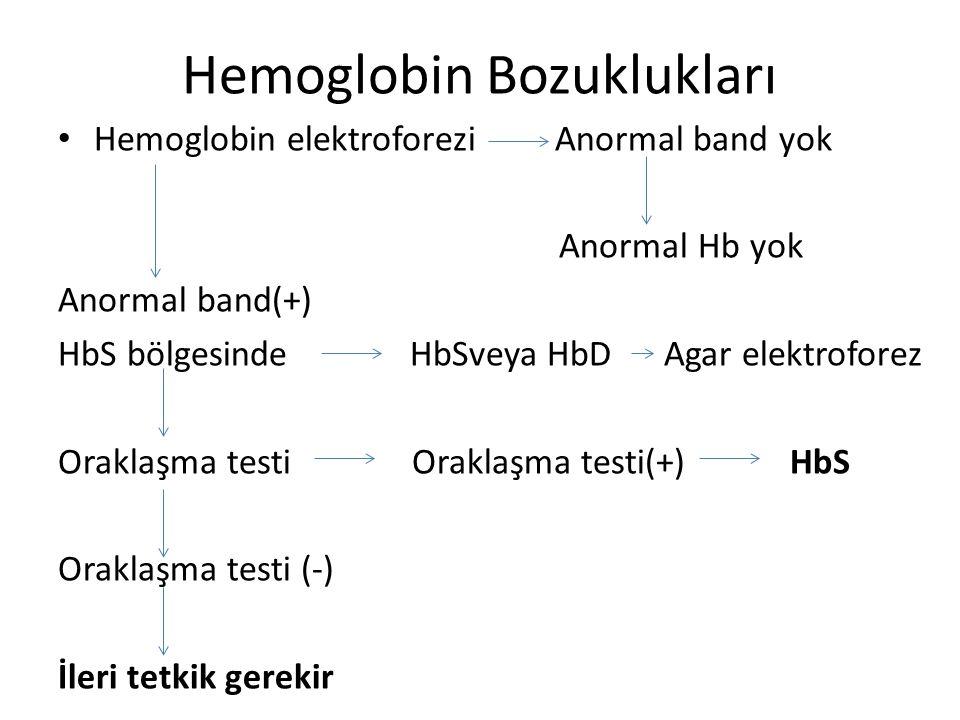 Hemoglobin Bozuklukları