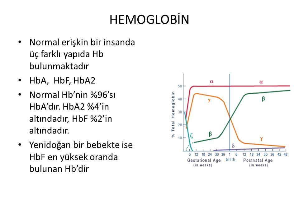 HEMOGLOBİN Normal erişkin bir insanda üç farklı yapıda Hb bulunmaktadır. HbA, HbF, HbA2.