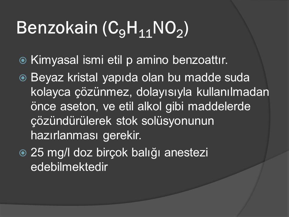 Benzokain (C9H11NO2) Kimyasal ismi etil p amino benzoattır.