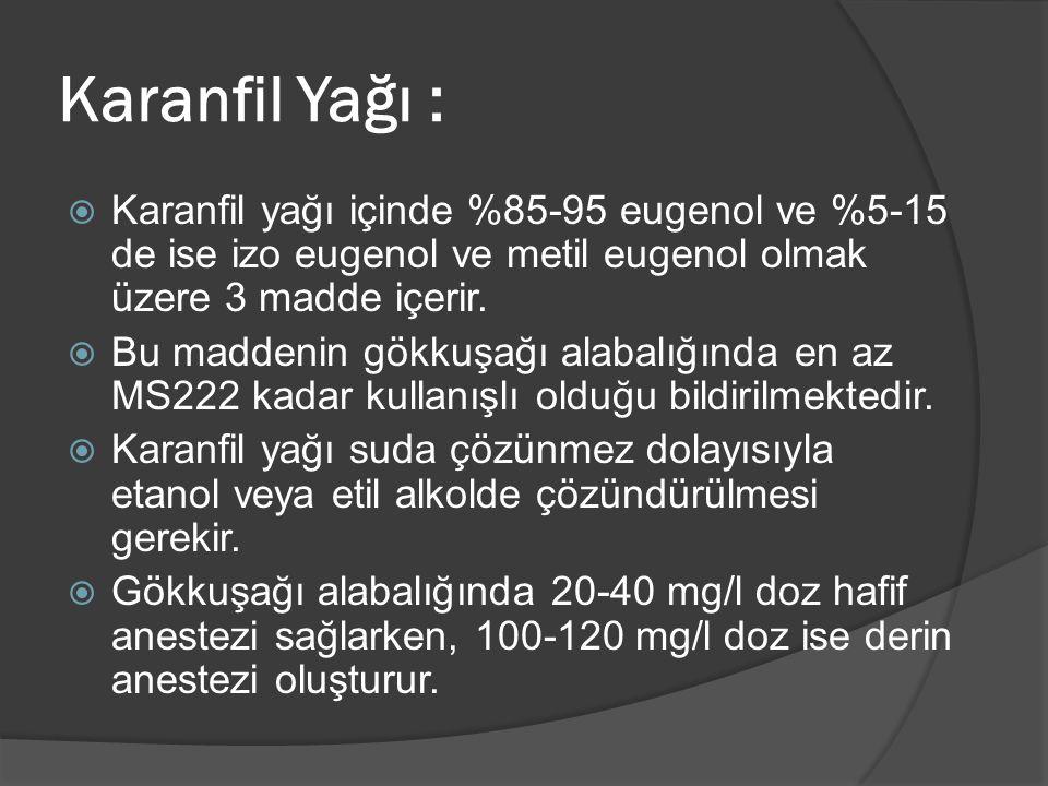 Karanfil Yağı : Karanfil yağı içinde %85-95 eugenol ve %5-15 de ise izo eugenol ve metil eugenol olmak üzere 3 madde içerir.