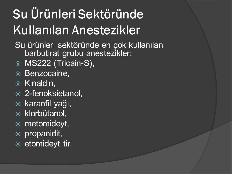 Su Ürünleri Sektöründe Kullanılan Anestezikler