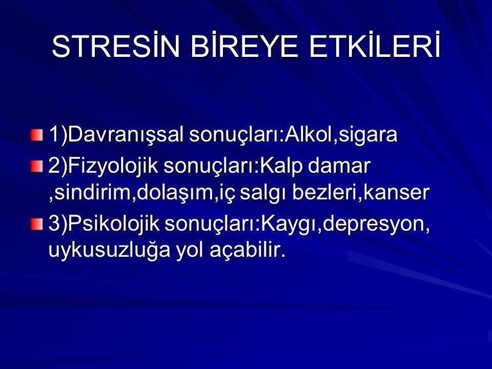 STRESİN BİREYE ETKİLERİ