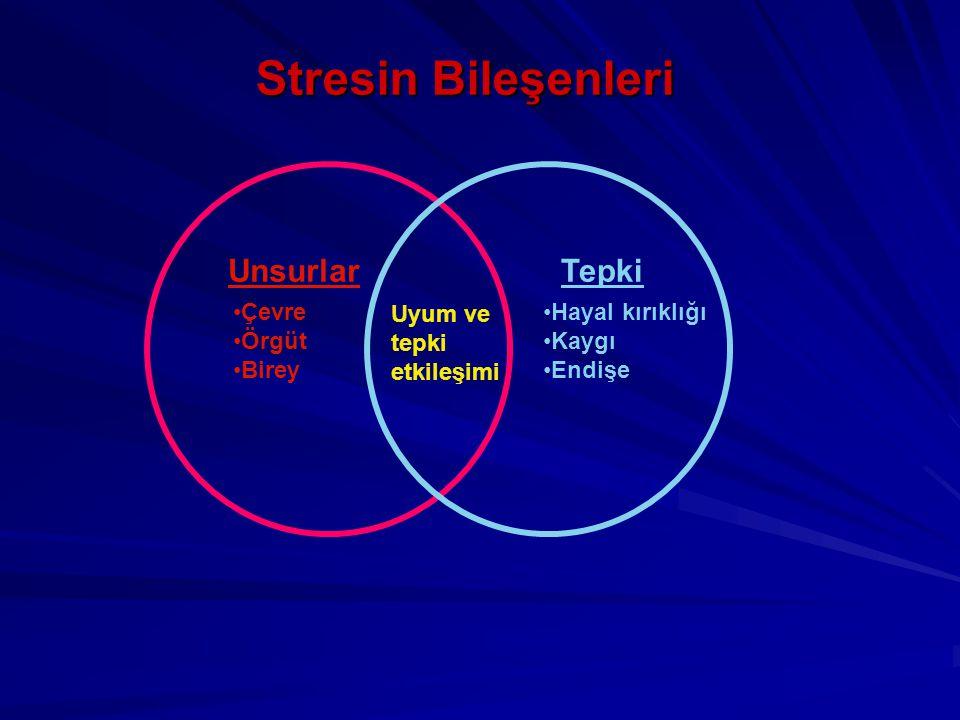 Stresin Bileşenleri Unsurlar Tepki Çevre Örgüt Birey Uyum ve tepki