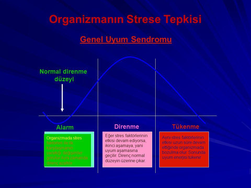 Organizmanın Strese Tepkisi