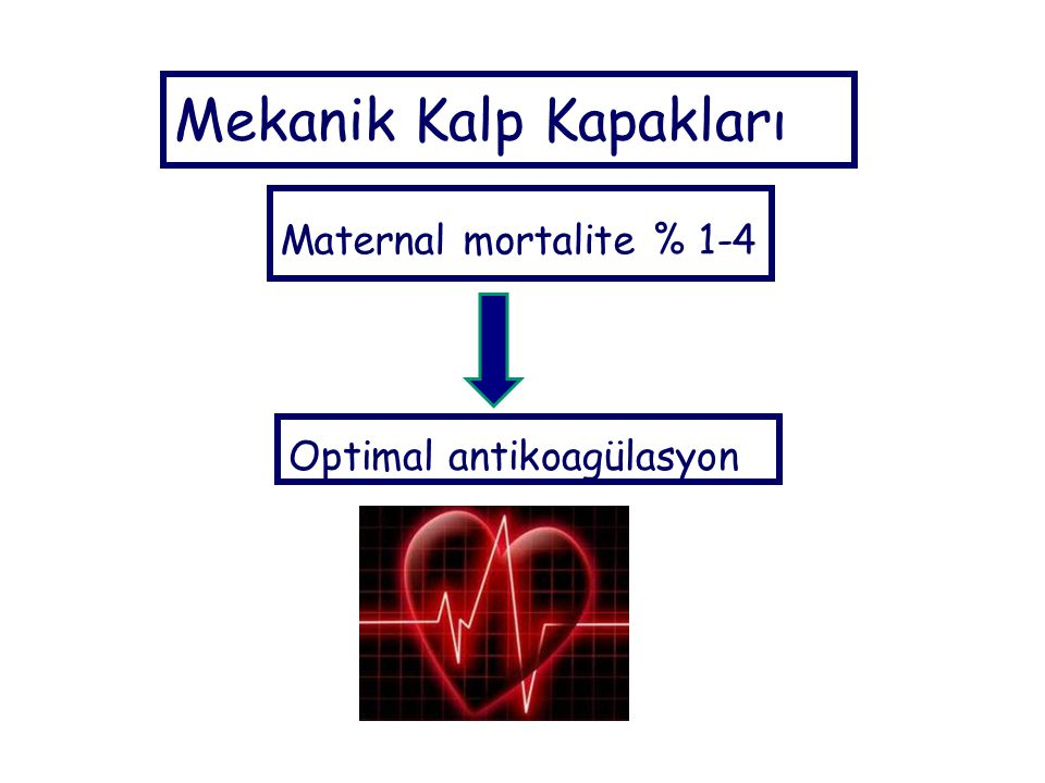 Mekanik Kalp Kapakları