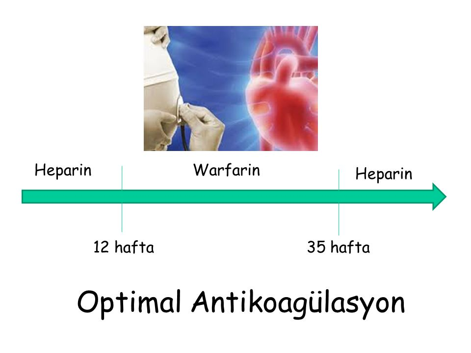 Optimal Antikoagülasyon