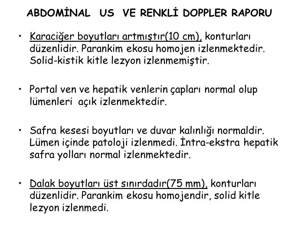 ABDOMİNAL US VE RENKLİ DOPPLER RAPORU