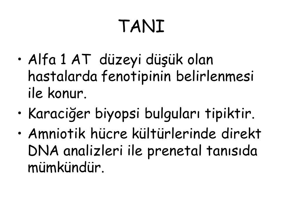 TANI Alfa 1 AT düzeyi düşük olan hastalarda fenotipinin belirlenmesi ile konur. Karaciğer biyopsi bulguları tipiktir.