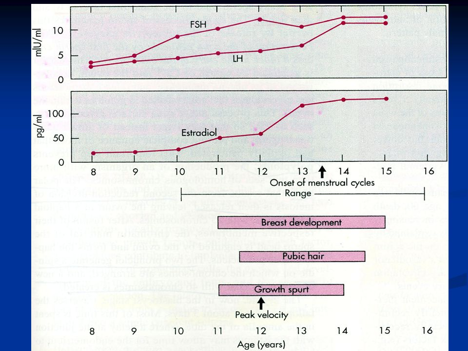 Üreme hormonları Female Puberty