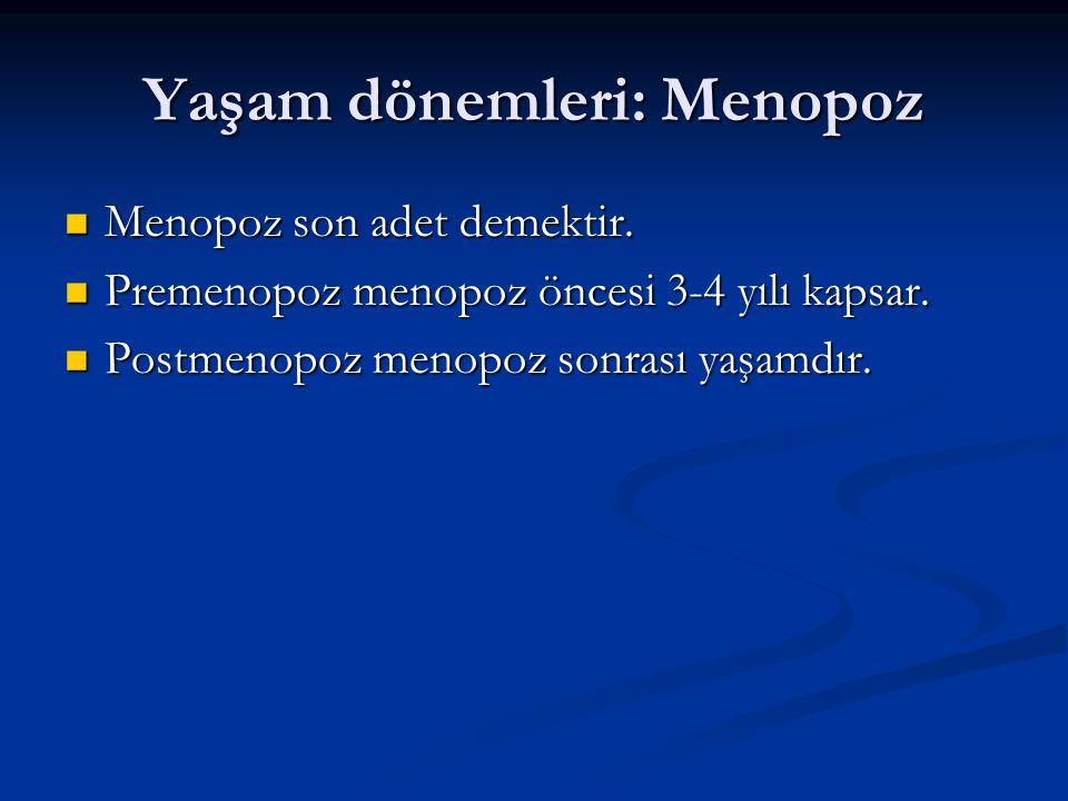Yaşam dönemleri: Menopoz
