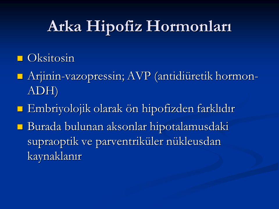 Arka Hipofiz Hormonları