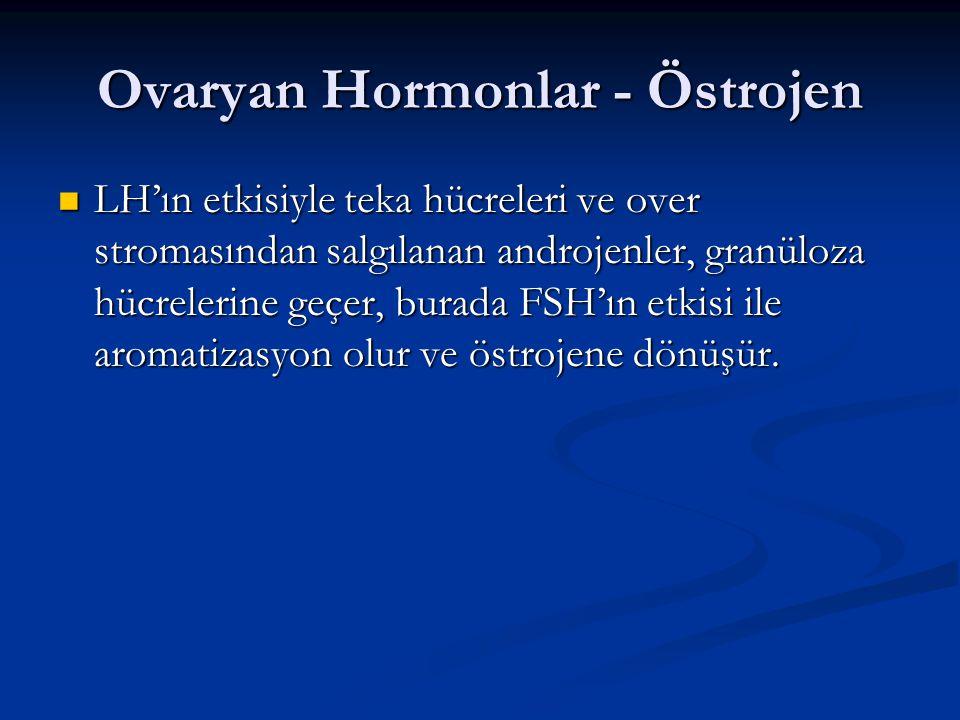 Ovaryan Hormonlar - Östrojen