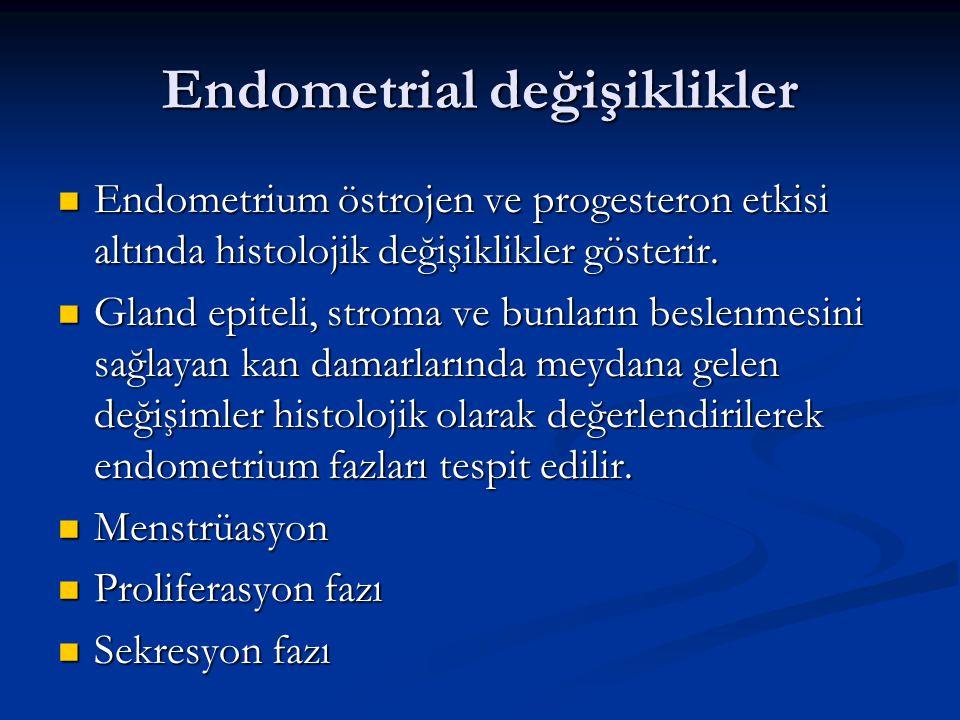 Endometrial değişiklikler