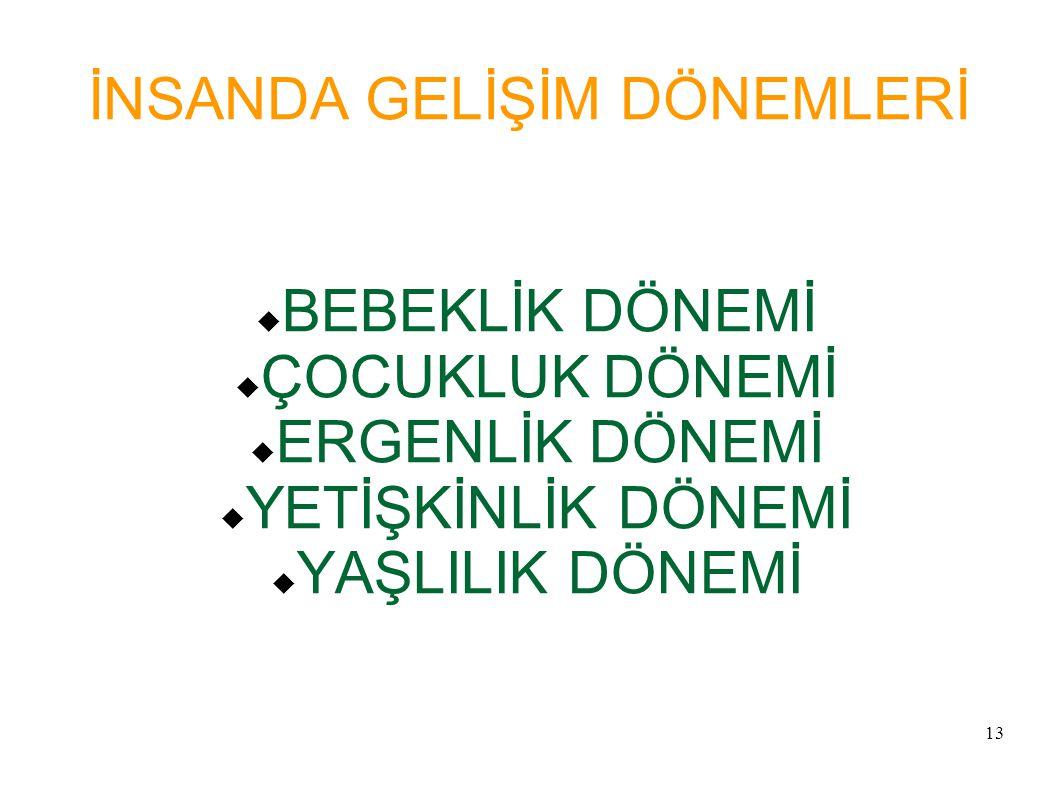 İNSANDA GELİŞİM DÖNEMLERİ