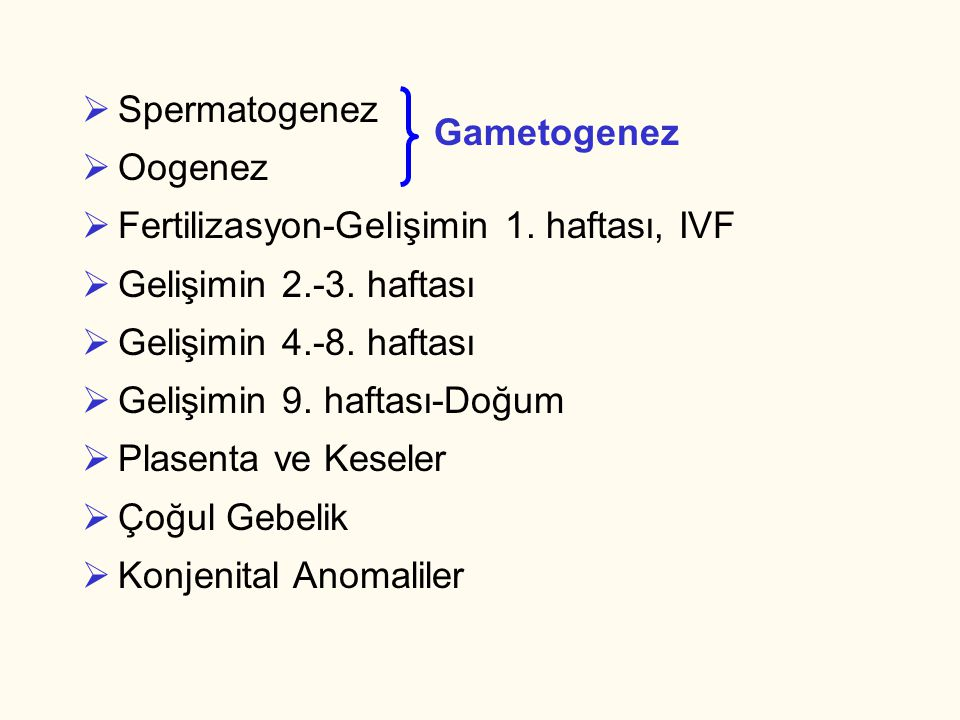 Spermatogenez Oogenez. Fertilizasyon-Gelişimin 1. haftası, IVF. Gelişimin 2.-3. haftası. Gelişimin 4.-8. haftası.