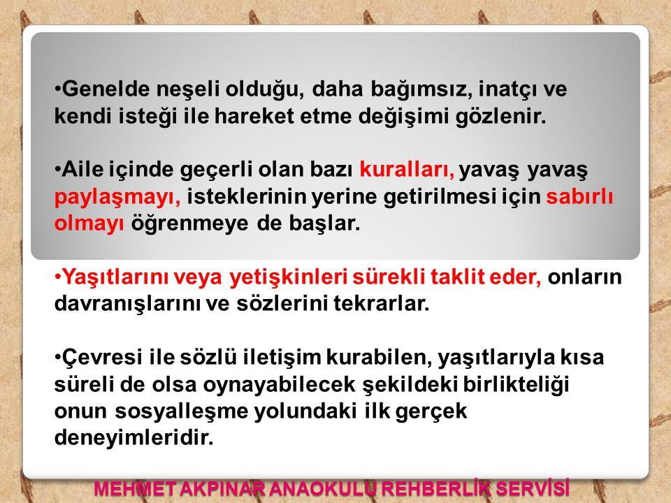 MEHMET AKPINAR ANAOKULU REHBERLİK SERVİSİ