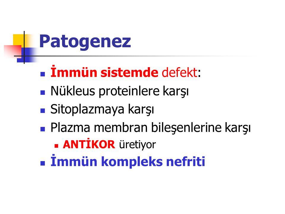 Patogenez İmmün sistemde defekt: Nükleus proteinlere karşı