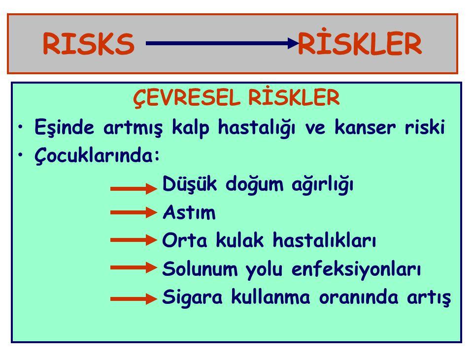 RISKS RİSKLER ÇEVRESEL RİSKLER