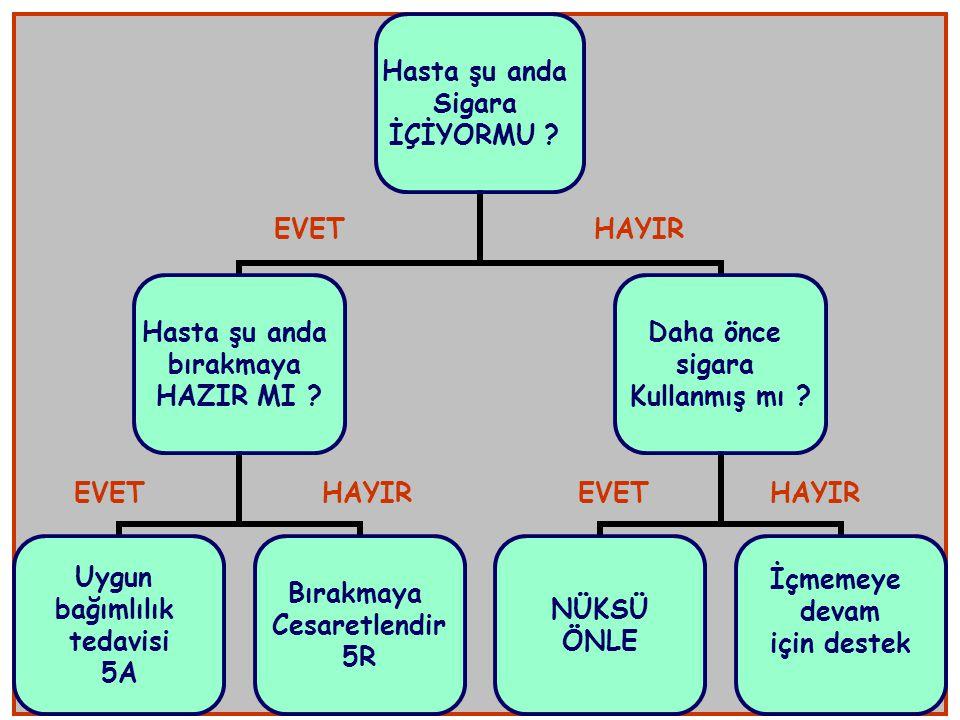 EVET HAYIR