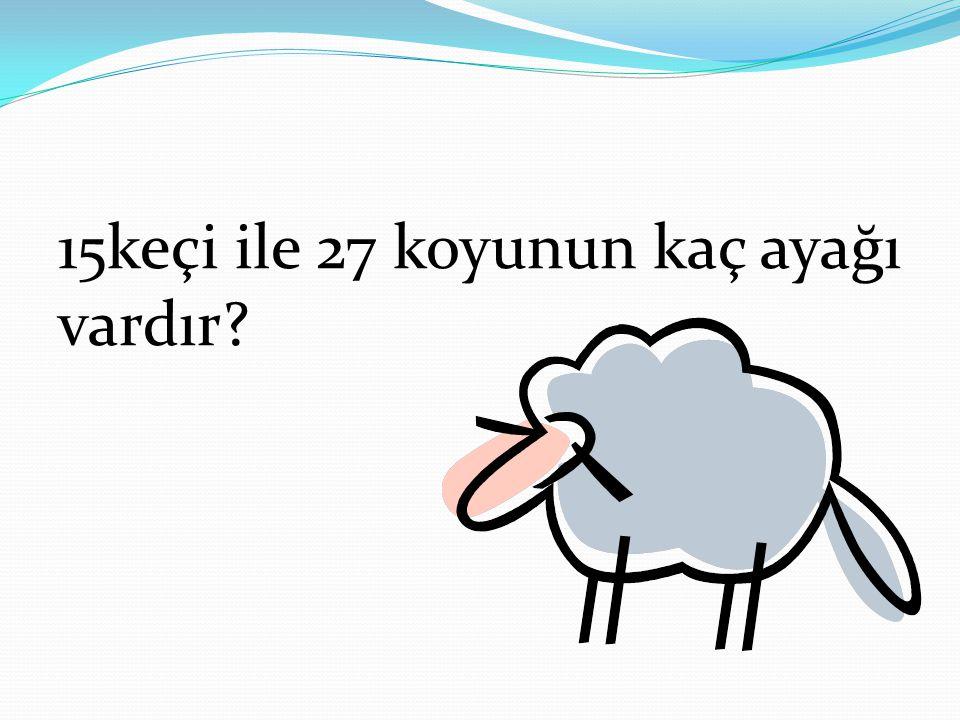 15keçi ile 27 koyunun kaç ayağı vardır