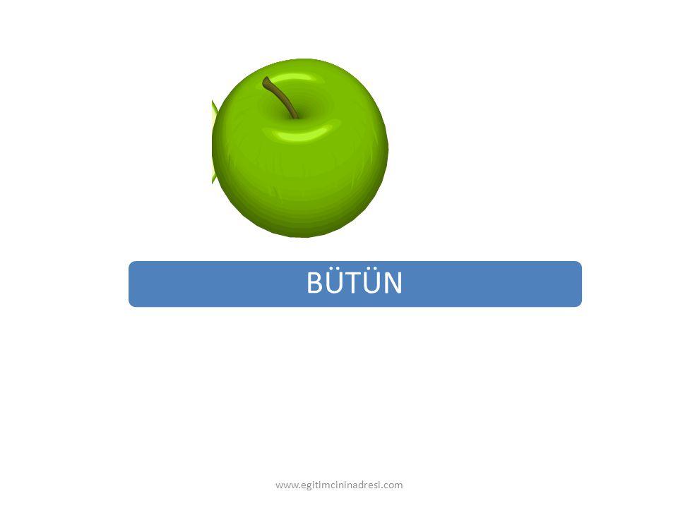BÜTÜN www.egitimcininadresi.com