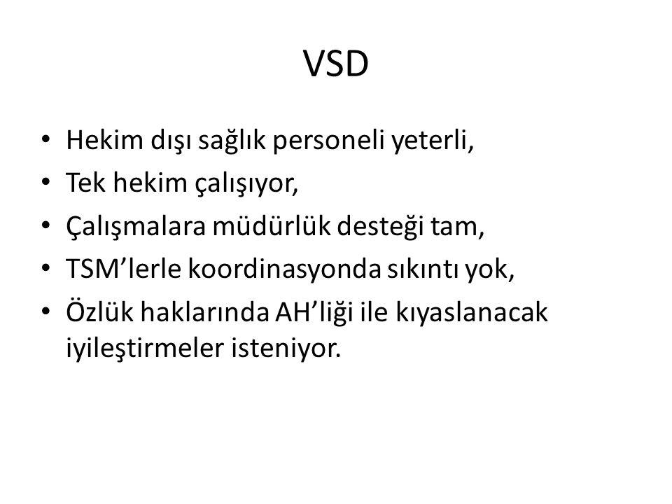 VSD Hekim dışı sağlık personeli yeterli, Tek hekim çalışıyor,
