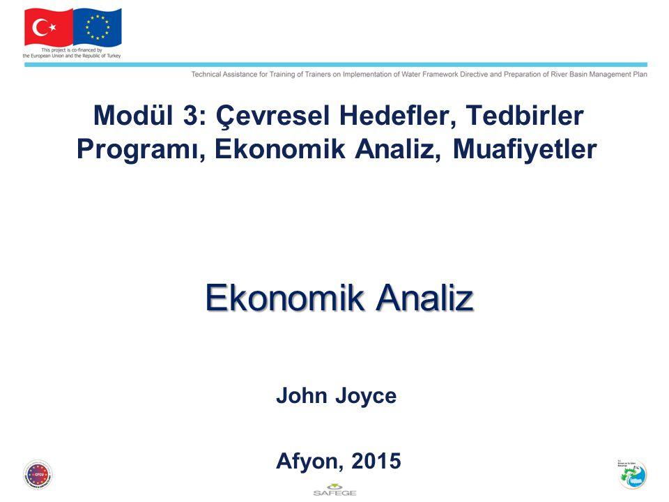 Ekonomik Analiz John Joyce