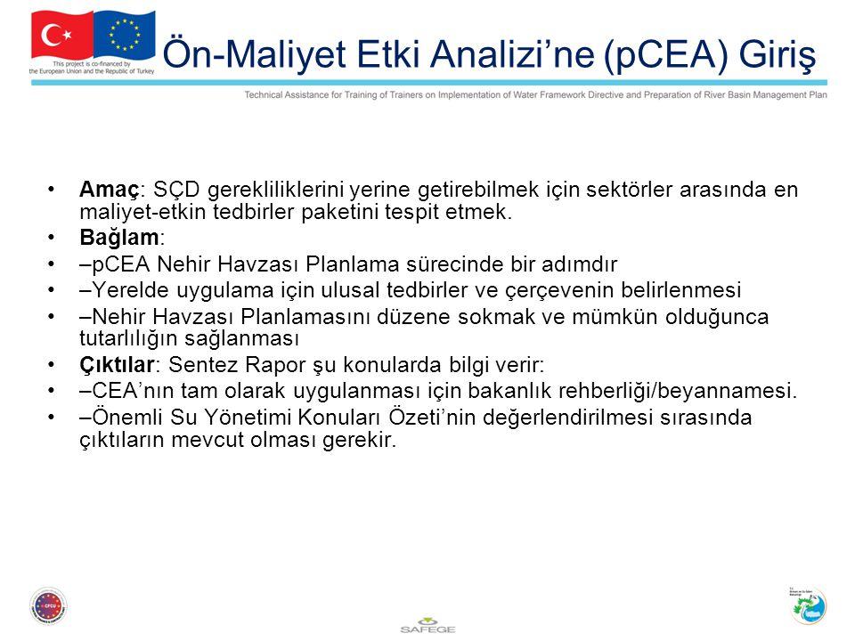 Ön-Maliyet Etki Analizi'ne (pCEA) Giriş