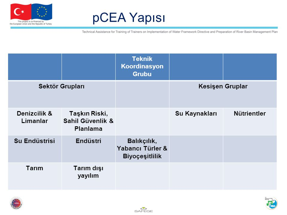 pCEA Yapısı Teknik Koordinasyon Grubu Sektör Grupları Kesişen Gruplar