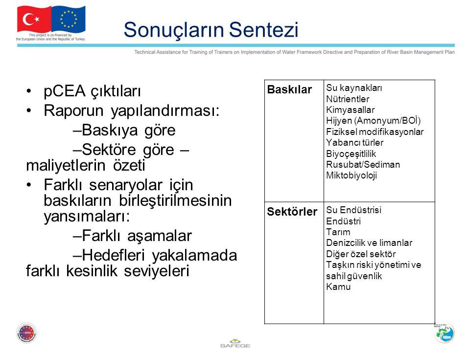 Sonuçların Sentezi pCEA çıktıları Raporun yapılandırması: