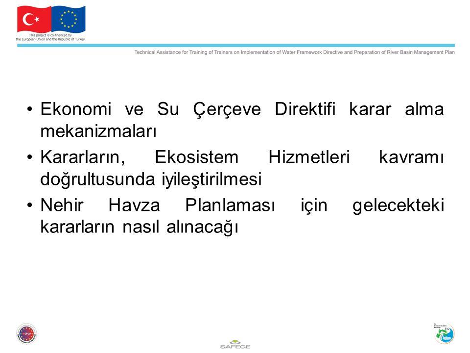 Ekonomi ve Su Çerçeve Direktifi karar alma mekanizmaları