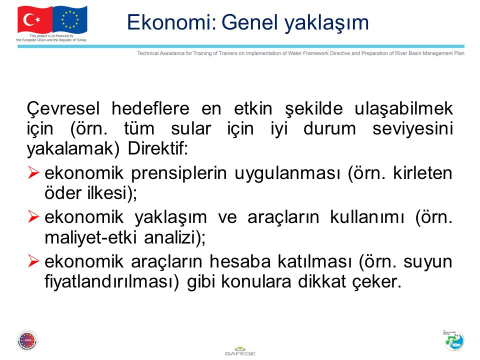 Ekonomi: Genel yaklaşım