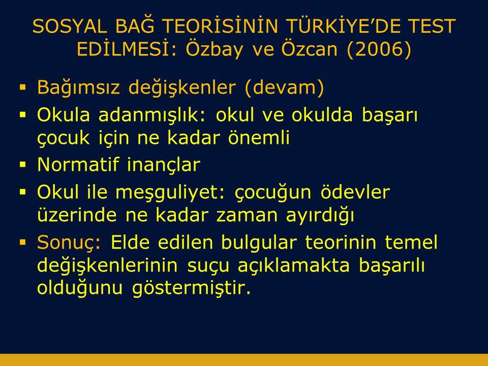 SOSYAL BAĞ TEORİSİNİN TÜRKİYE'DE TEST EDİLMESİ: Özbay ve Özcan (2006)