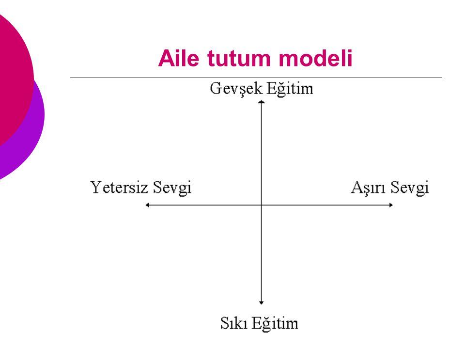 Aile tutum modeli