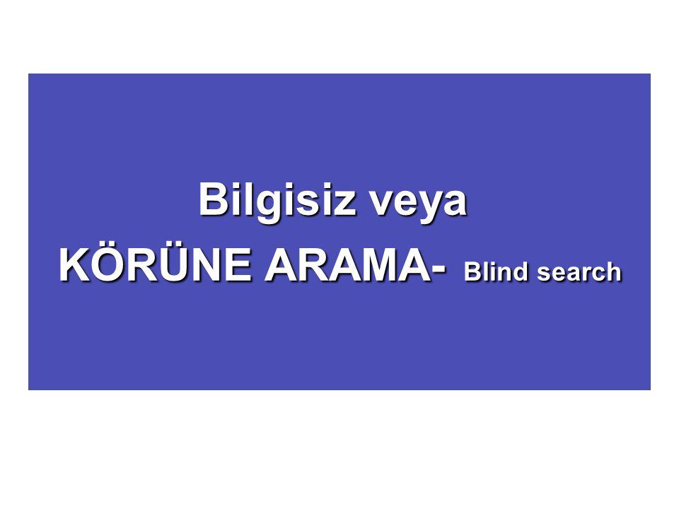 KÖRÜNE ARAMA- Blind search