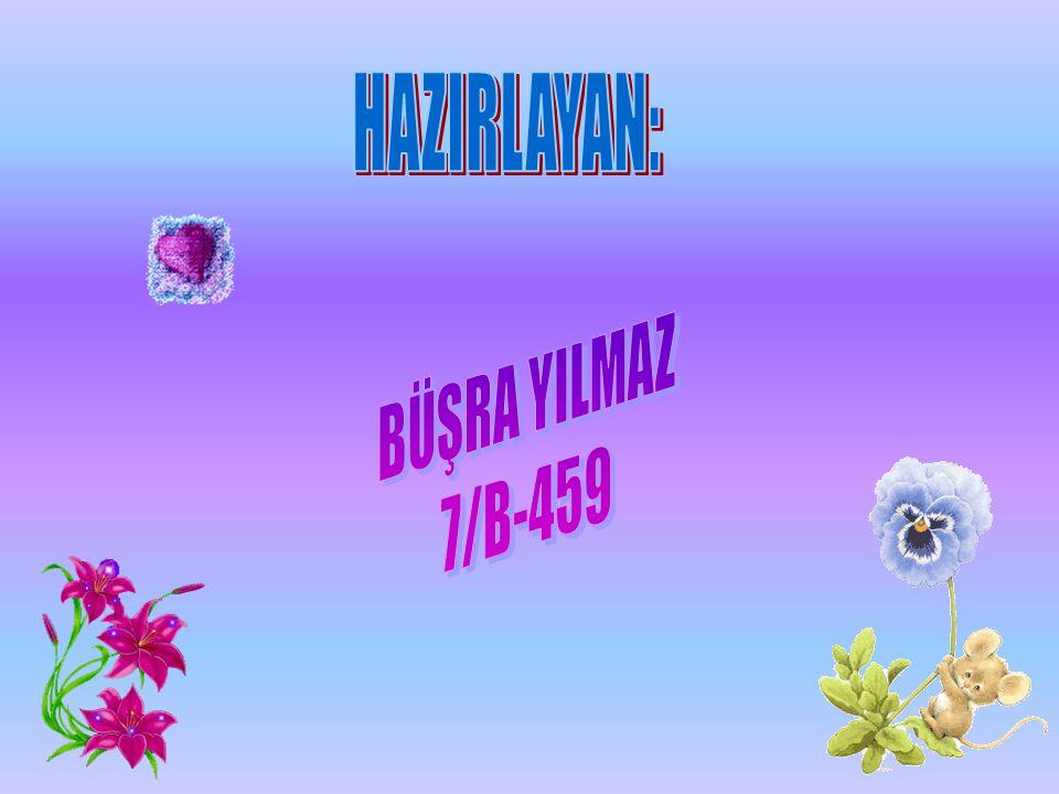 HAZIRLAYAN: BÜŞRA YILMAZ 7/B-459
