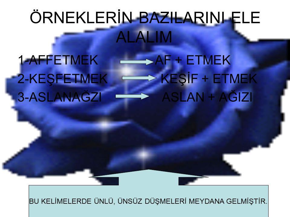 ÖRNEKLERİN BAZILARINI ELE ALALIM