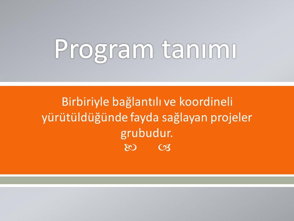 Program tanımı Birbiriyle bağlantılı ve koordineli yürütüldüğünde fayda sağlayan projeler grubudur.