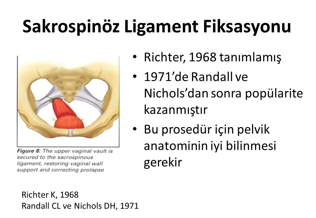 18.05.2014 Dr. F. Demirci. TJOD