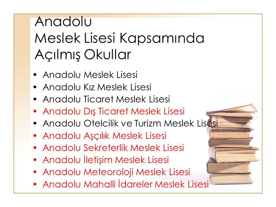 Anadolu Meslek Lisesi Kapsamında Açılmış Okullar