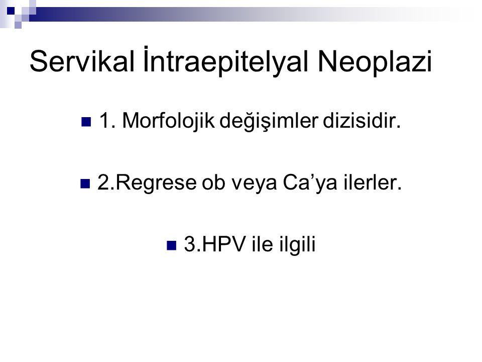 Servikal İntraepitelyal Neoplazi